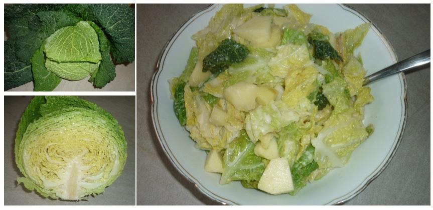 Apfel-Wirsing-Gemüse